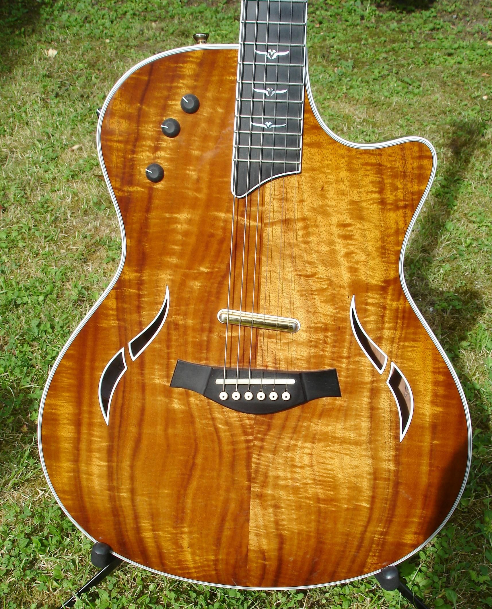 Stringkiller's Taylor Custom T5 Koa